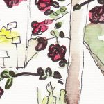 Merian-Garten-Rosen-Teaser2